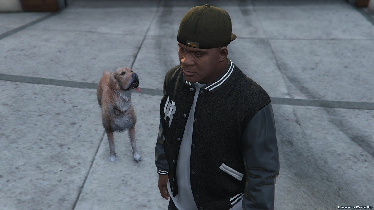 Golden Retriever Pet Mod for GTA 5 - Картинка #2
