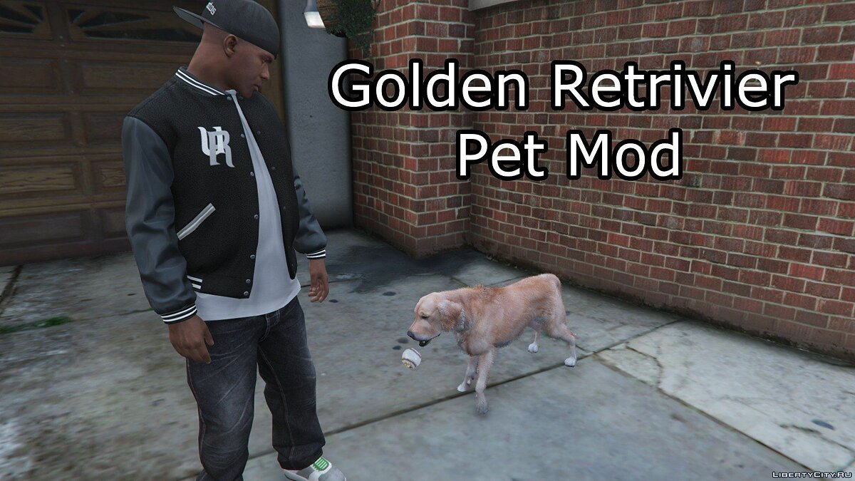 Golden Retriever Pet Mod for GTA 5 - Картинка #4