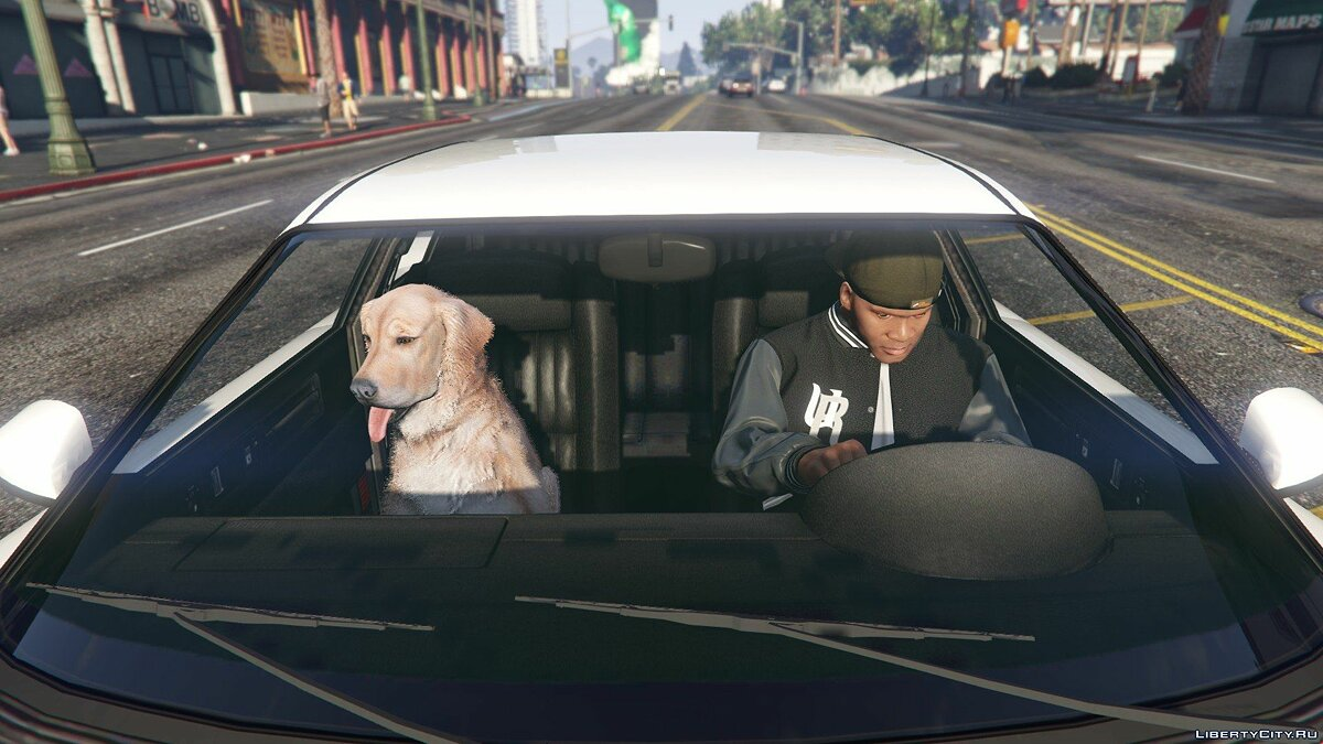Golden Retriever Pet Mod for GTA 5 - Картинка #5