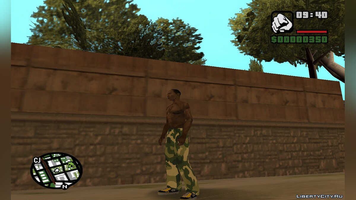 Pants and shorts Camouflage pants for GTA San Andreas