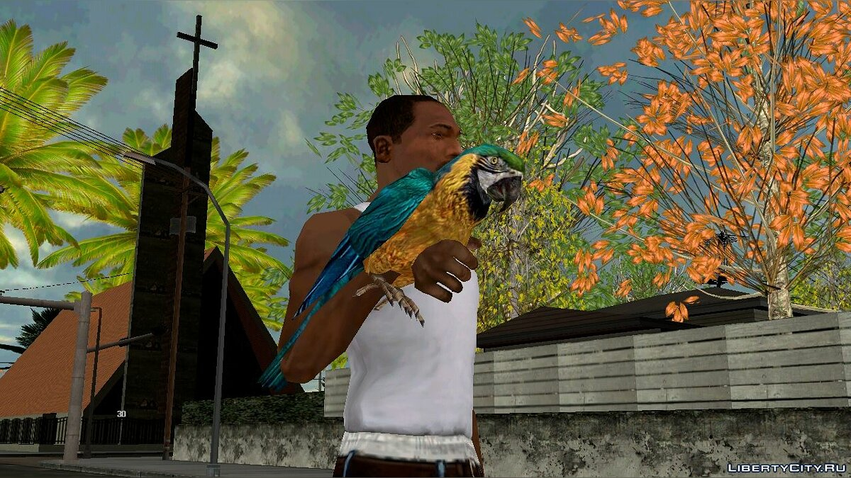 Weapon mod Parrot on hand for GTA San Andreas (iOS, Android)
