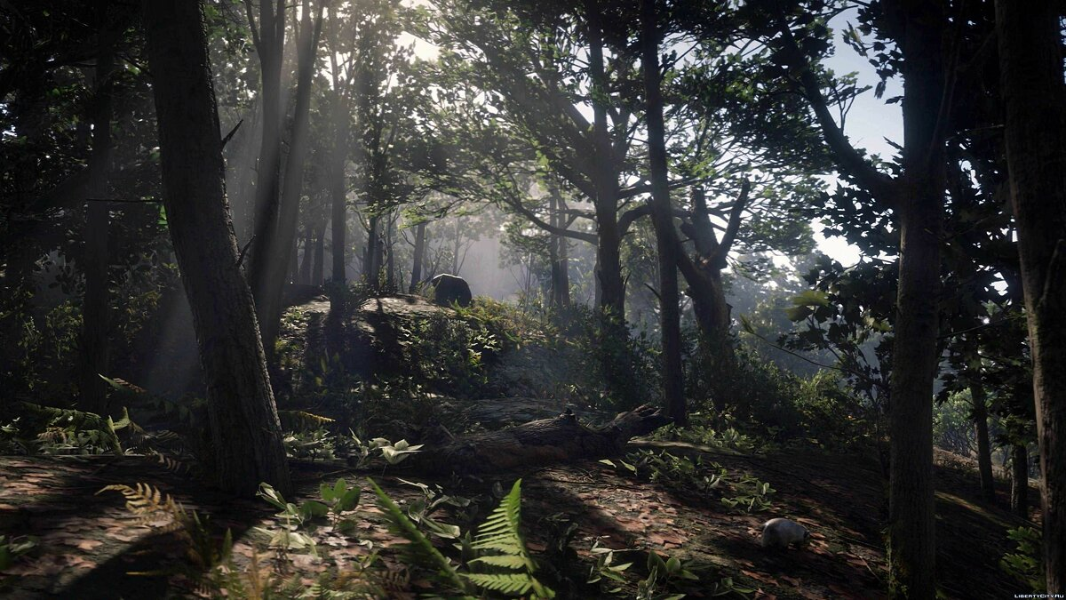 File Photo-Realism   Reshade Settings for for modmakers